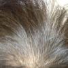 市販の白髪染めカラー!白髪が染まる仕組み