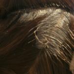 髪が傷まない市販の白髪染め人気ランキング!髪が傷まないヘアカラー剤の種類